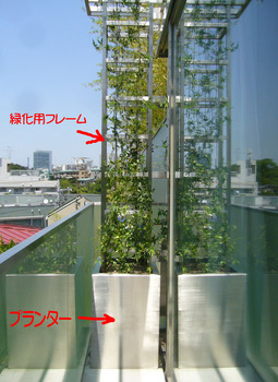 壁面緑化01.jpg